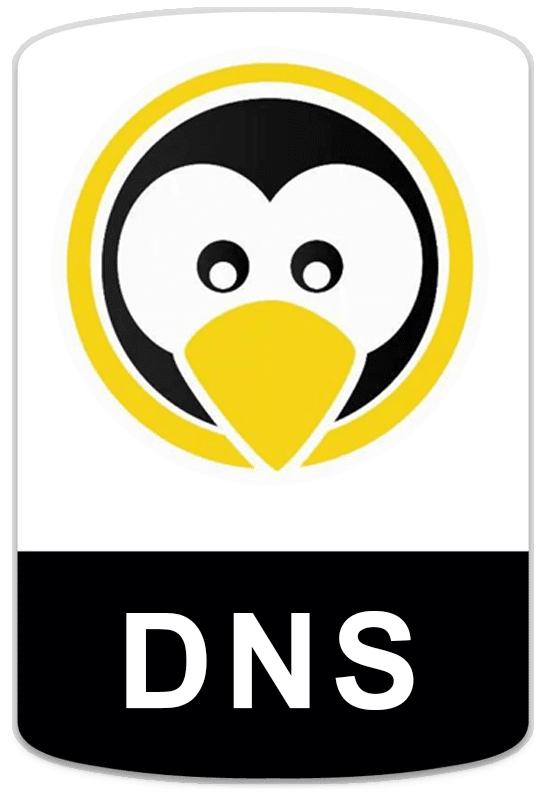 badge-linux-dns Cursos
